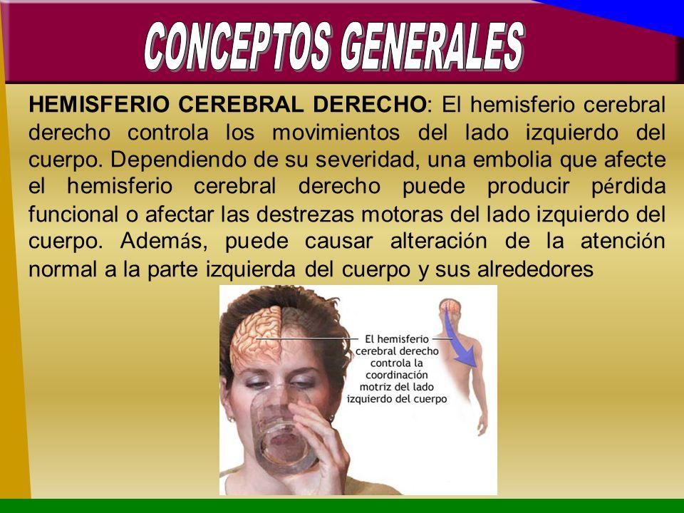HEMISFERIO CEREBRAL DERECHO: El hemisferio cerebral derecho controla los movimientos del lado izquierdo del cuerpo. Dependiendo de su severidad, una e