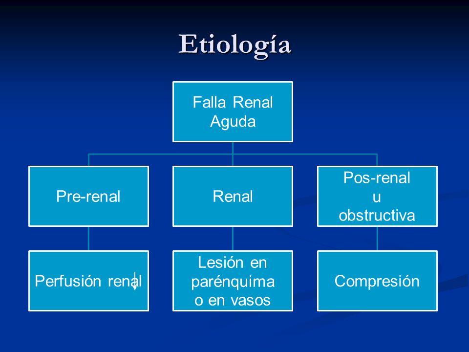 Etiología Falla Renal Aguda Pre-renal Perfusión renal Renal Lesión en parénquima o en vasos Pos-renal u obstructiva Compresión