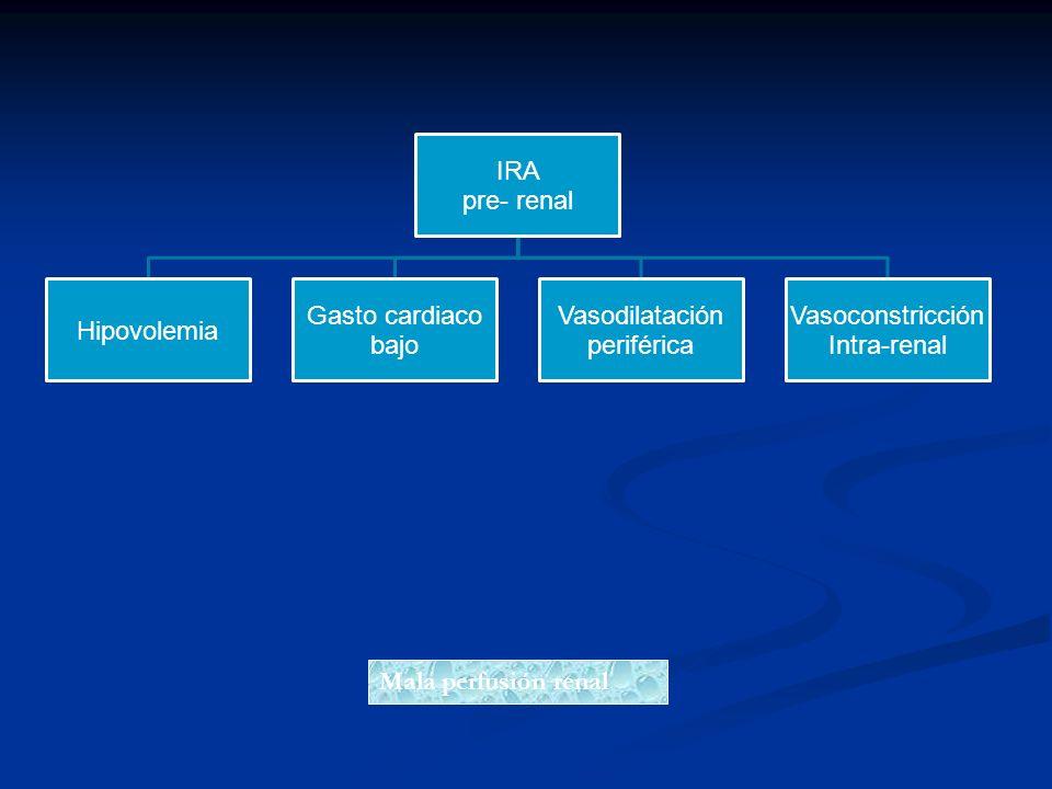 IRA pre- renal Hipovolemia Gasto cardiaco bajo Vasodilatación periférica Vasoconstricción Intra-renal Mala perfusión renal