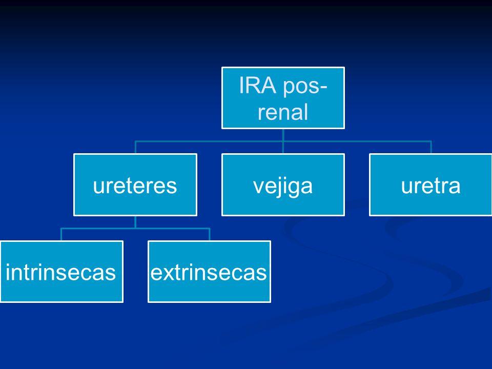 IRA pos- renal ureteres intrinsecasextrinsecas vejigauretra