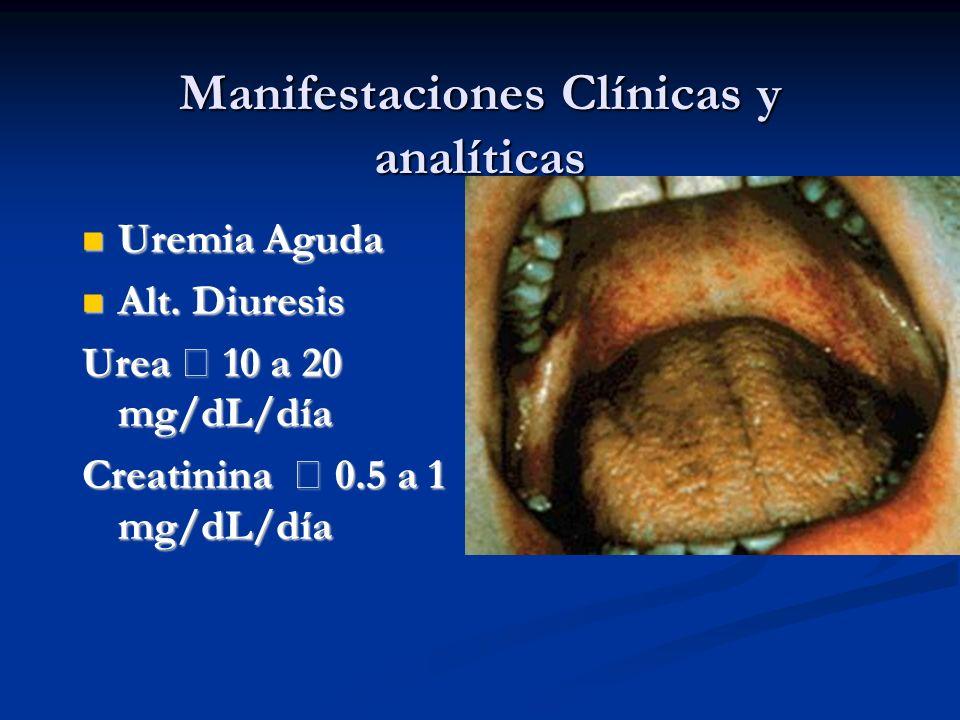 Manifestaciones Clínicas y analíticas Uremia Aguda Uremia Aguda Alt. Diuresis Alt. Diuresis Urea 10 a 20 mg/dL/día Creatinina 0.5 a 1 mg/dL/día