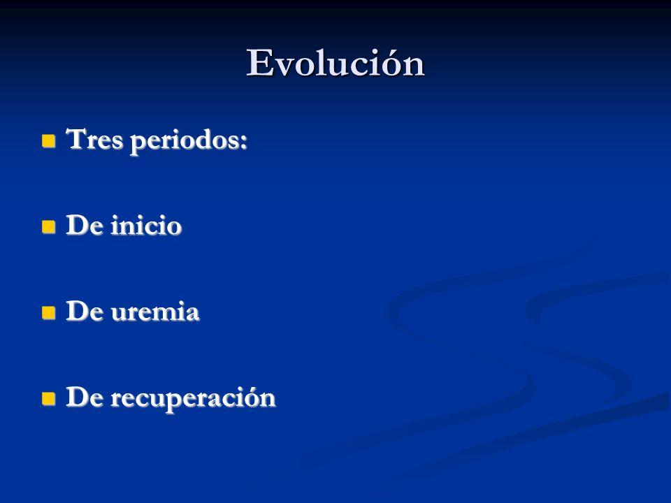 Evolución Tres periodos: Tres periodos: De inicio De inicio De uremia De uremia De recuperación De recuperación