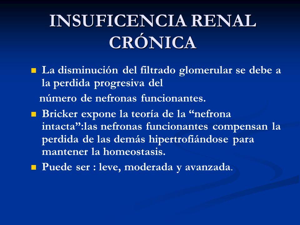 INSUFICENCIA RENAL CRÓNICA La disminución del filtrado glomerular se debe a la perdida progresiva del número de nefronas funcionantes. Bricker expone