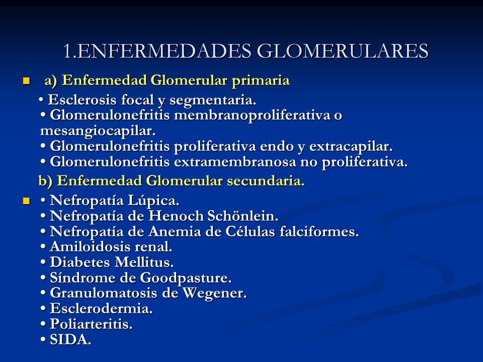1.ENFERMEDADES GLOMERULARES a) Enfermedad Glomerular primaria a) Enfermedad Glomerular primaria Esclerosis focal y segmentaria. Glomerulonefritis memb