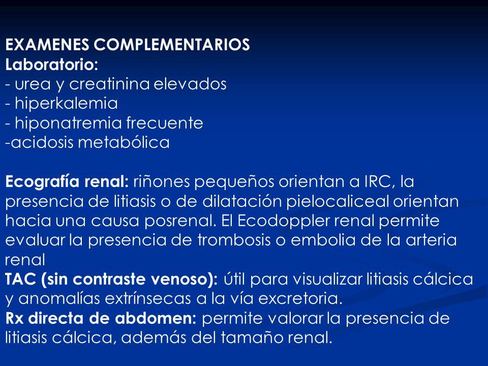 EXAMENES COMPLEMENTARIOS Laboratorio: - urea y creatinina elevados - hiperkalemia - hiponatremia frecuente -acidosis metabólica Ecografía renal: riñon