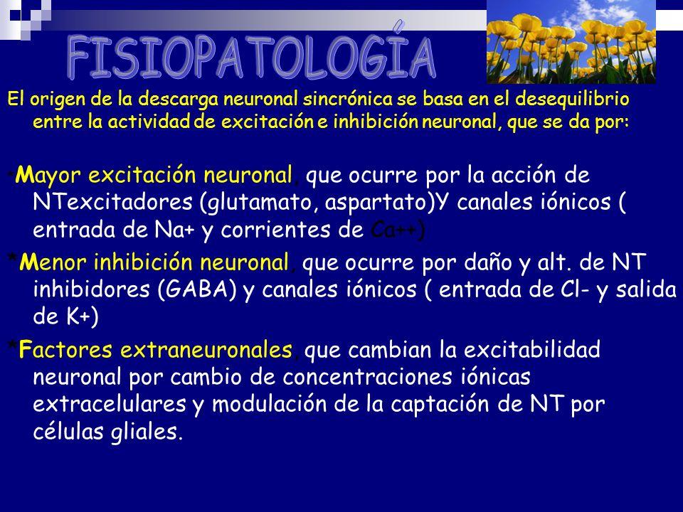 El origen de la descarga neuronal sincrónica se basa en el desequilibrio entre la actividad de excitación e inhibición neuronal, que se da por: * Mayo