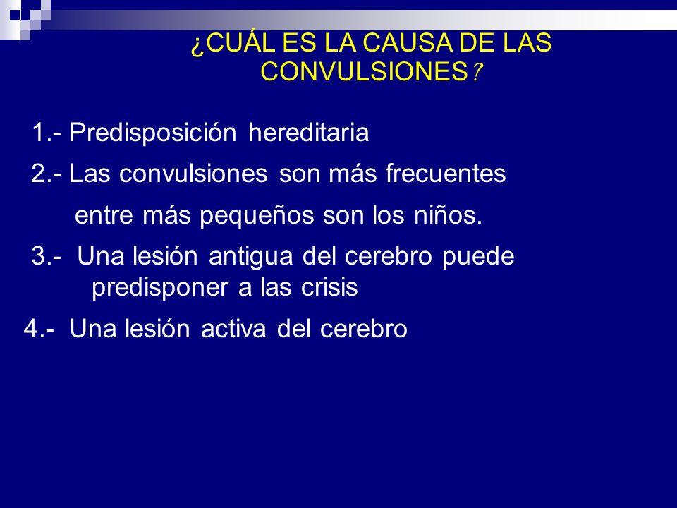 1.- Predisposición hereditaria 2.- Las convulsiones son más frecuentes entre más pequeños son los niños. 3.- Una lesión antigua del cerebro puede pred