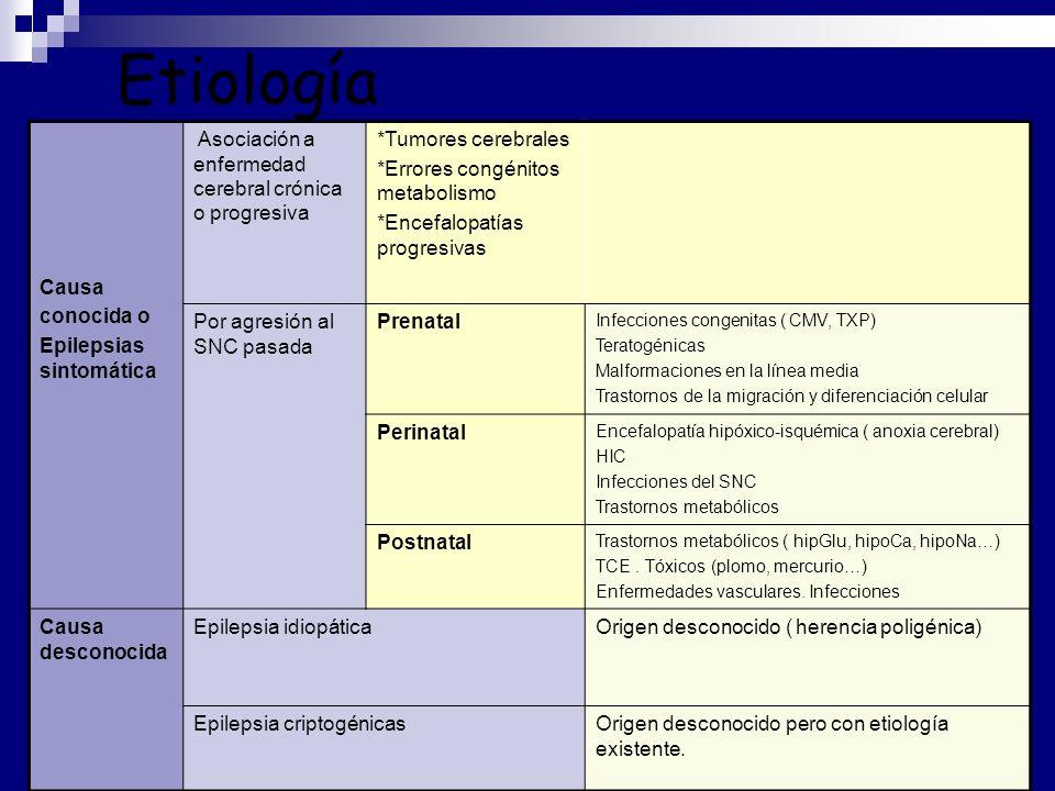 Etiología Causa conocida o Epilepsias sintomática Asociación a enfermedad cerebral crónica o progresiva *Tumores cerebrales *Errores congénitos metabolismo *Encefalopatías progresivas Por agresión al SNC pasada Prenatal Infecciones congenitas ( CMV, TXP) Teratogénicas Malformaciones en la línea media Trastornos de la migración y diferenciación celular Perinatal Encefalopatía hipóxico-isquémica ( anoxia cerebral) HIC Infecciones del SNC Trastornos metabólicos Postnatal Trastornos metabólicos ( hipGlu, hipoCa, hipoNa…) TCE.
