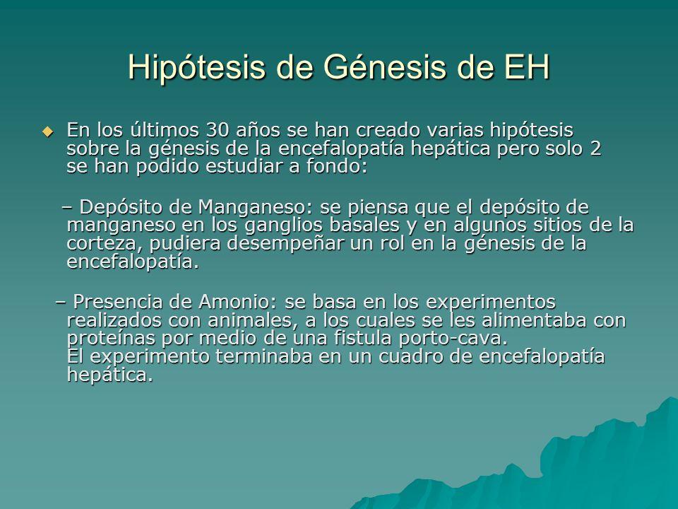 Hipótesis de Génesis de EH En los últimos 30 años se han creado varias hipótesis sobre la génesis de la encefalopatía hepática pero solo 2 se han podi