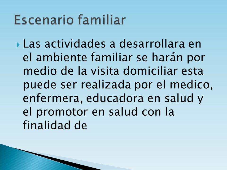 Las actividades a desarrollara en el ambiente familiar se harán por medio de la visita domiciliar esta puede ser realizada por el medico, enfermera, e