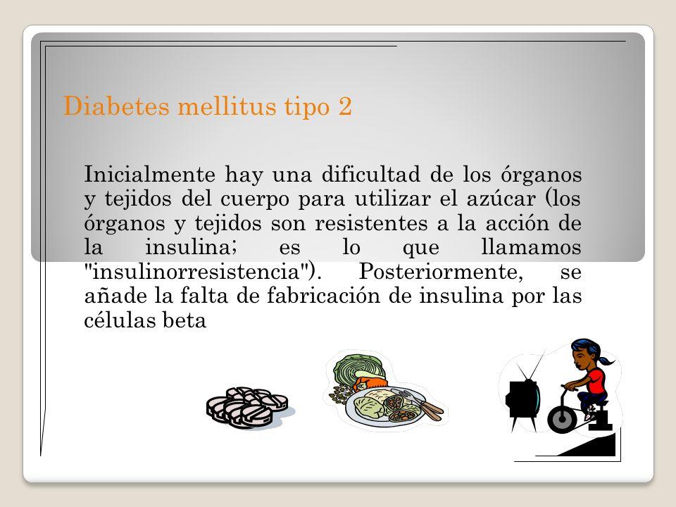 Diabetes mellitus tipo 2 Inicialmente hay una dificultad de los órganos y tejidos del cuerpo para utilizar el azúcar (los órganos y tejidos son resist