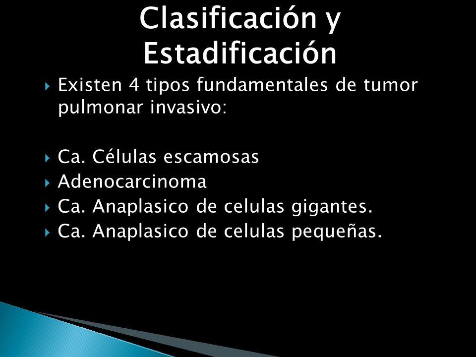 Marcadores tumorales Antígeno carcinoembrionario (CEA) Carcinoma de células no pequeñas (correlación entre nivel y extensión tumoral) 50- 60% metástas