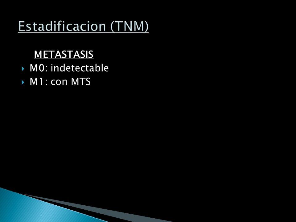 GANGLIOS N0: sin afeccion N1: peribronquial o hiliar ipsilateral N2: mediastinico ipsilateral o por debajo de la carina N3: mediastinico contralateral
