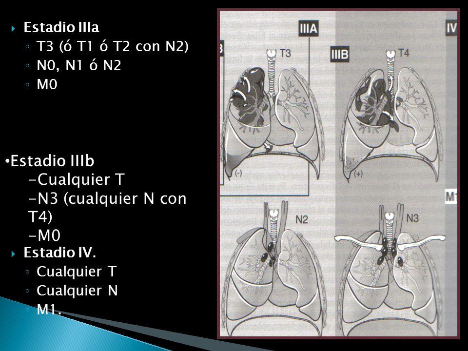 Limitado: tumor confinado al torax, mas ganglios supraclaviculares, pero excluyendo ganglios cervicales y axilares Extenso: tumor por fuera de los lim