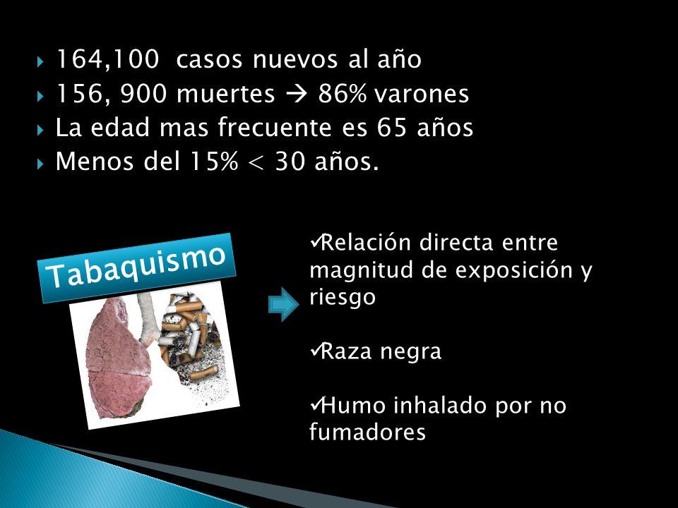 Tabaquismo activo (80%) Tabaquismo pasivo (5%) Ocupacional: asbesto, hidrocarburos, cromo, niquel (7%) Geografico: asbesto, arsenico, uranio (3%) Desc