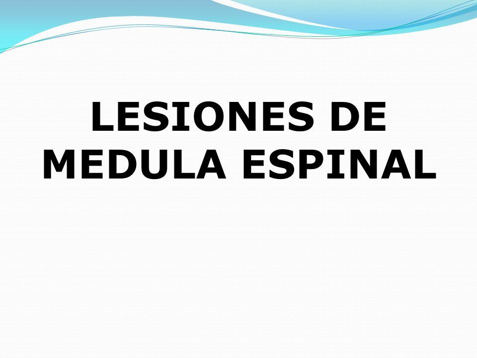 LESIONES DE MEDULA ESPINAL