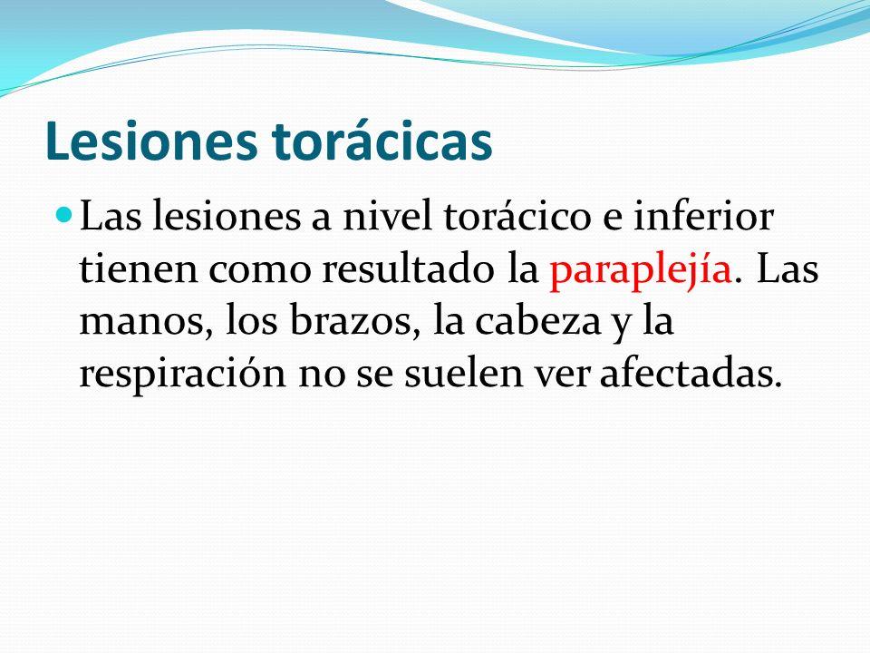Lesiones torácicas Las lesiones a nivel torácico e inferior tienen como resultado la paraplejía. Las manos, los brazos, la cabeza y la respiración no