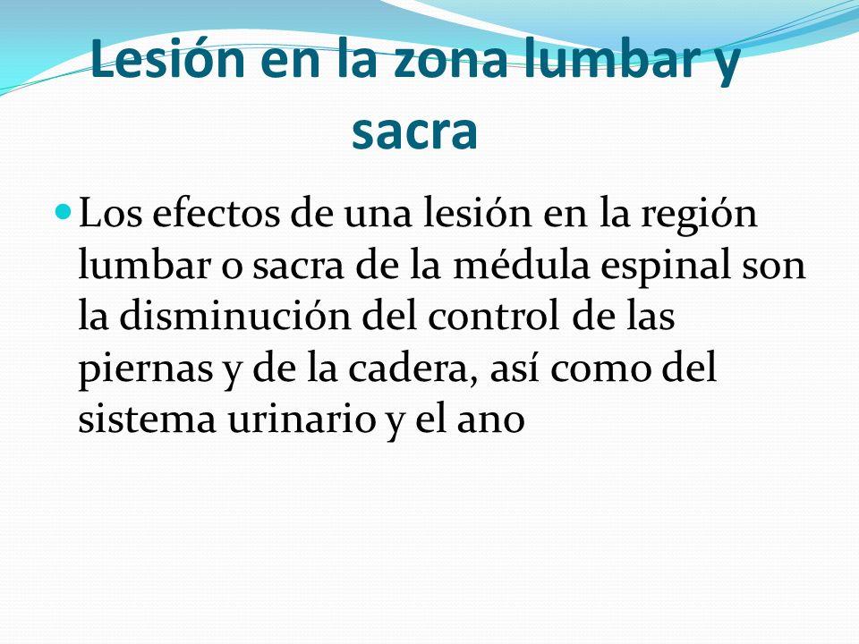 Lesión en la zona lumbar y sacra Los efectos de una lesión en la región lumbar o sacra de la médula espinal son la disminución del control de las pier