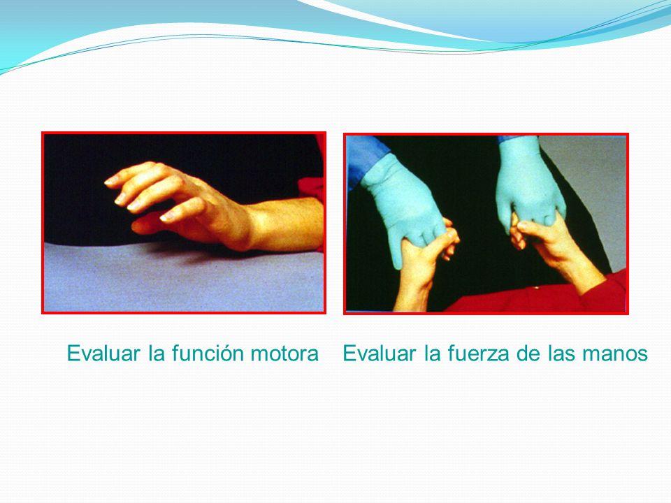 Evaluar la función motoraEvaluar la fuerza de las manos