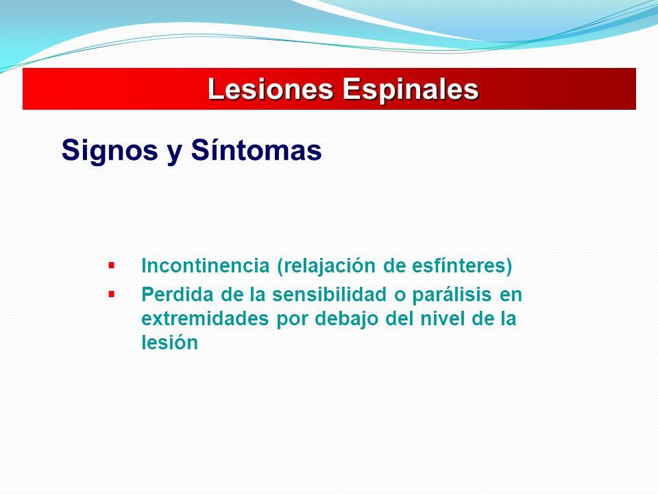 Incontinencia (relajación de esfínteres) Perdida de la sensibilidad o parálisis en extremidades por debajo del nivel de la lesión Lesiones Espinales L