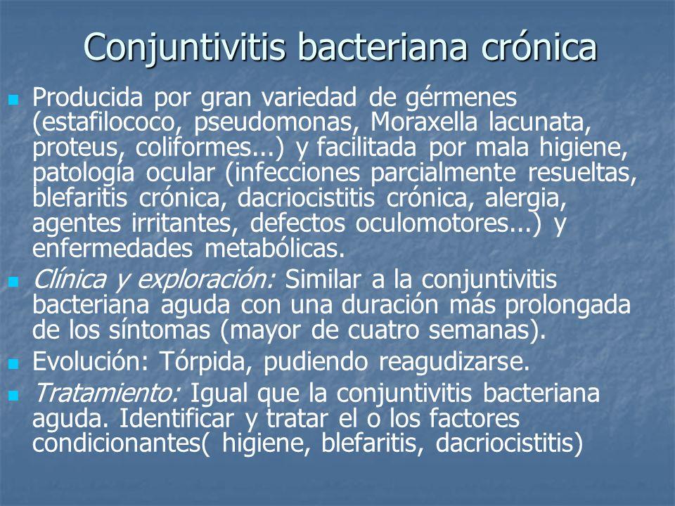 Conjuntivitis bacteriana crónica Producida por gran variedad de gérmenes (estafilococo, pseudomonas, Moraxella lacunata, proteus, coliformes...) y fac