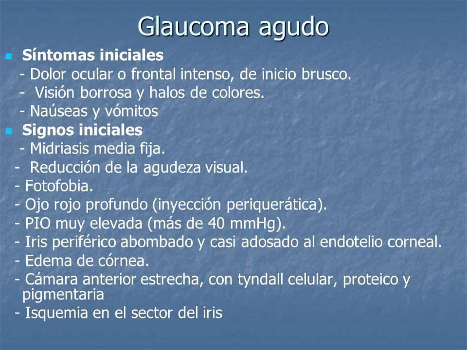 Glaucoma agudo Síntomas iniciales - Dolor ocular o frontal intenso, de inicio brusco. - Visión borrosa y halos de colores. - Naúseas y vómitos Signos
