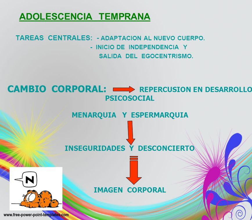 ADOLESCENCIA TEMPRANA TAREAS CENTRALES: - ADAPTACION AL NUEVO CUERPO. - INICIO DE INDEPENDENCIA Y SALIDA DEL EGOCENTRISMO. CAMBIO CORPORAL: REPERCUSIO