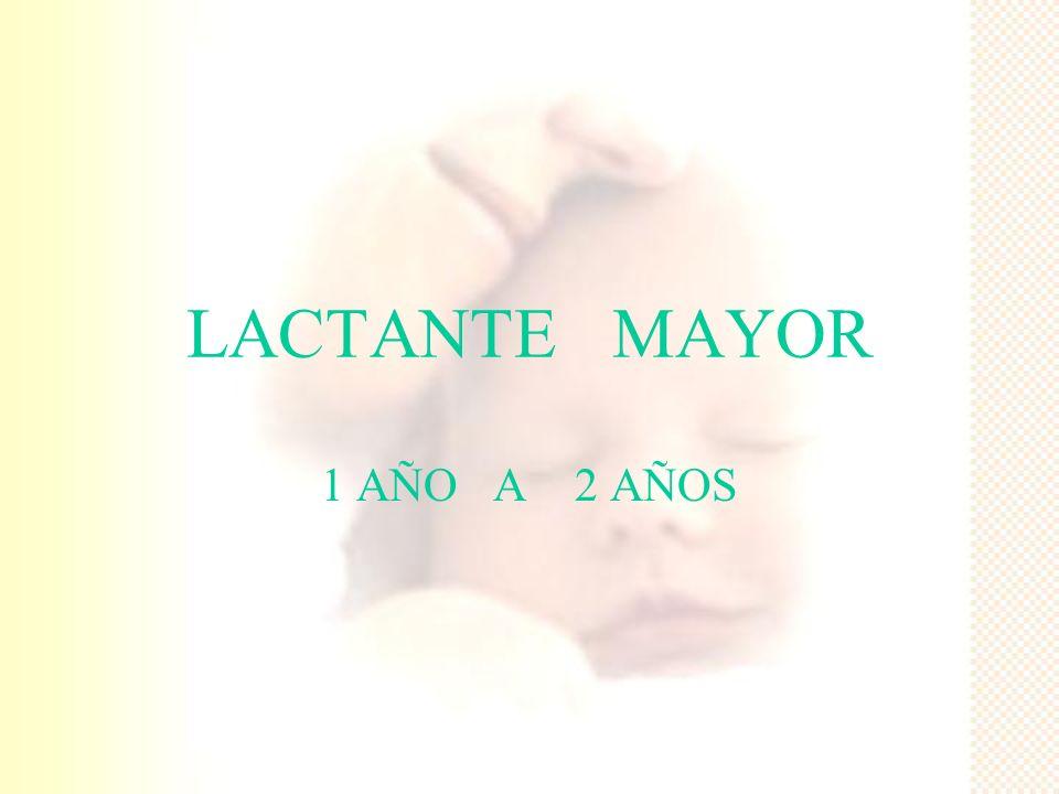LACTANTE MAYOR 1 AÑO A 2 AÑOS