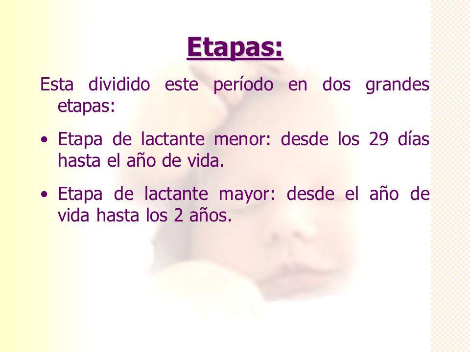 Etapas: Esta dividido este período en dos grandes etapas: Etapa de lactante menor: desde los 29 días hasta el año de vida. Etapa de lactante mayor: de