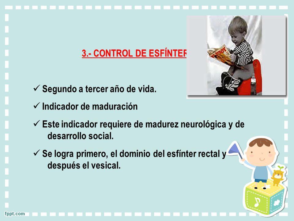 3.- CONTROL DE ESFÍNTER. Segundo a tercer año de vida. Indicador de maduración Este indicador requiere de madurez neurológica y de desarrollo social.