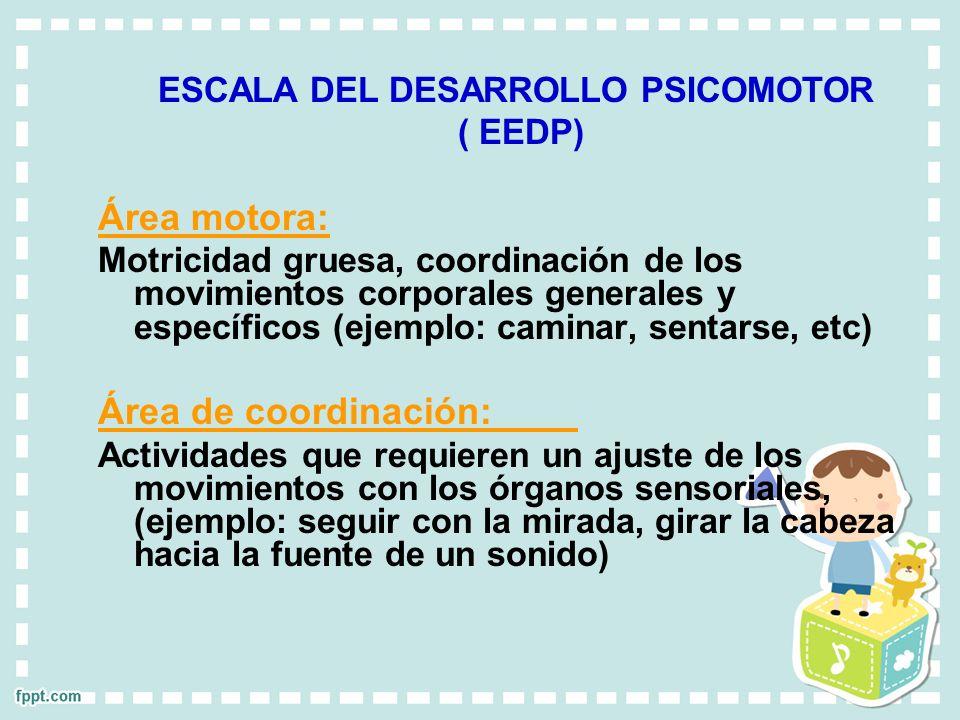 ESCALA DEL DESARROLLO PSICOMOTOR ( EEDP) Área motora: Motricidad gruesa, coordinación de los movimientos corporales generales y específicos (ejemplo:
