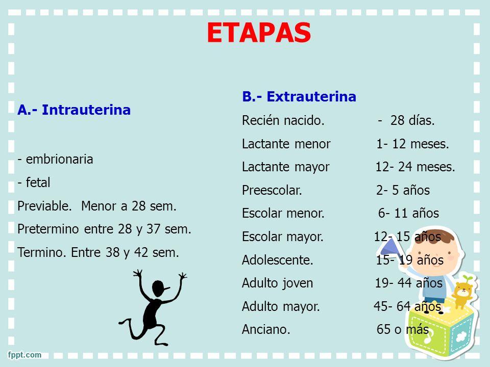 B.- Extrauterina Recién nacido. - 28 días. Lactante menor 1- 12 meses. Lactante mayor 12- 24 meses. Preescolar. 2- 5 años Escolar menor. 6- 11 años Es