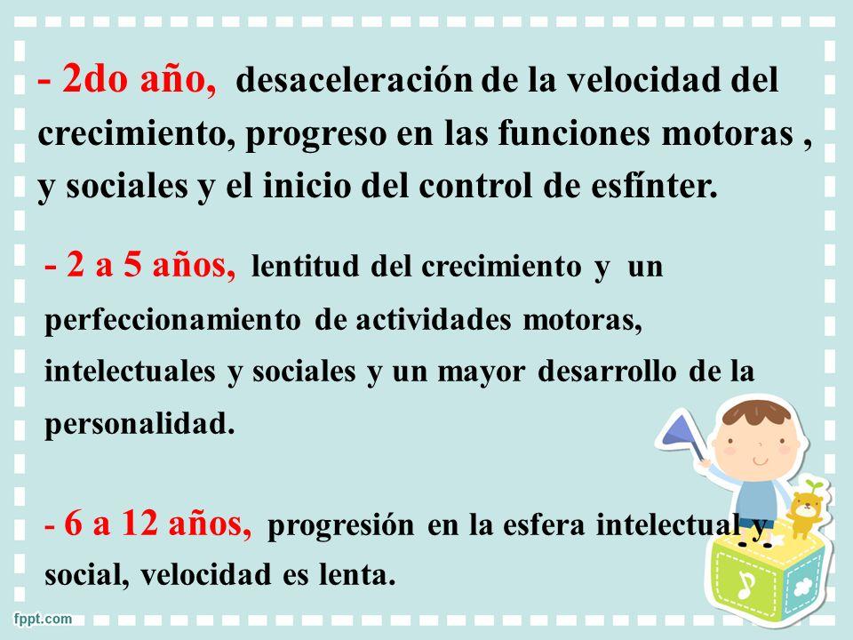 - 2do año, desaceleración de la velocidad del crecimiento, progreso en las funciones motoras, y sociales y el inicio del control de esfínter. - 2 a 5