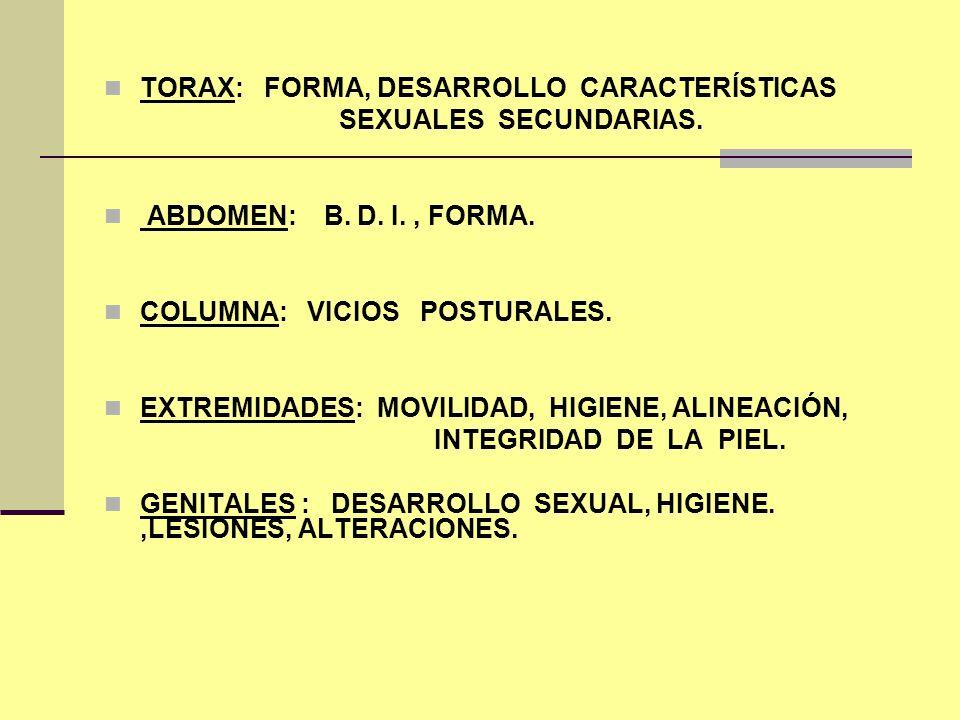 TORAX: FORMA, DESARROLLO CARACTERÍSTICAS SEXUALES SECUNDARIAS. ABDOMEN: B. D. I., FORMA. COLUMNA: VICIOS POSTURALES. EXTREMIDADES: MOVILIDAD, HIGIENE,