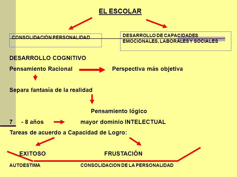 EL ESCOLAR CONSOLIDACIÓN PERSONALIDAD DESARROLLO DE CAPACIDADES EMOCIONALES, LABORALES Y SOCIALES DESARROLLO COGNITIVO Pensamiento Racional Perspectiv
