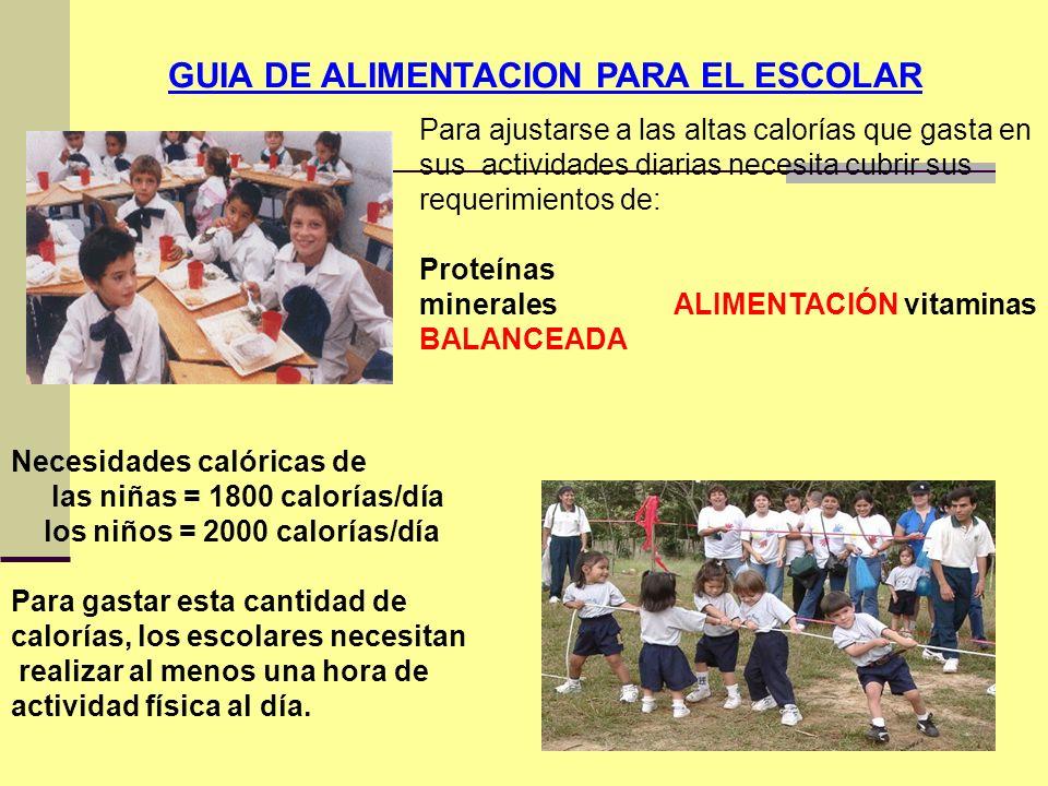 GUIA DE ALIMENTACION PARA EL ESCOLAR Para ajustarse a las altas calorías que gasta en sus actividades diarias necesita cubrir sus requerimientos de: P