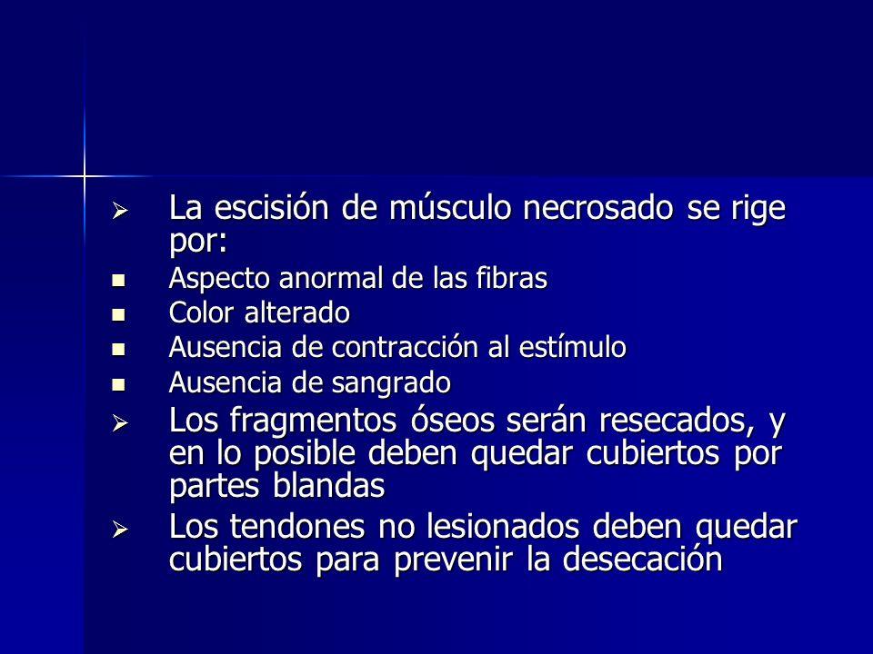 Estabilización de la fractura Una fijación estable reduce los espacios muertos y disminuye el dolor, el edema, las rigideces y la osteoporosis reaccional Una fijación estable reduce los espacios muertos y disminuye el dolor, el edema, las rigideces y la osteoporosis reaccional Permite la rápida movilización del paciente, evitando complicaciones respiratorias, tracciones, yesos, disminuyendo la internación Permite la rápida movilización del paciente, evitando complicaciones respiratorias, tracciones, yesos, disminuyendo la internación