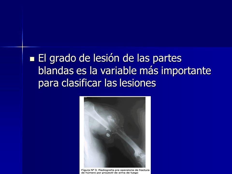 El grado de lesión de las partes blandas es la variable más importante para clasificar las lesiones El grado de lesión de las partes blandas es la var