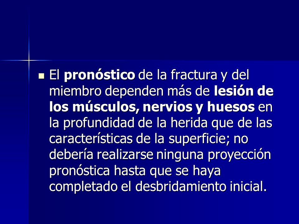 El pronóstico de la fractura y del miembro dependen más de lesión de los músculos, nervios y huesos en la profundidad de la herida que de las caracter