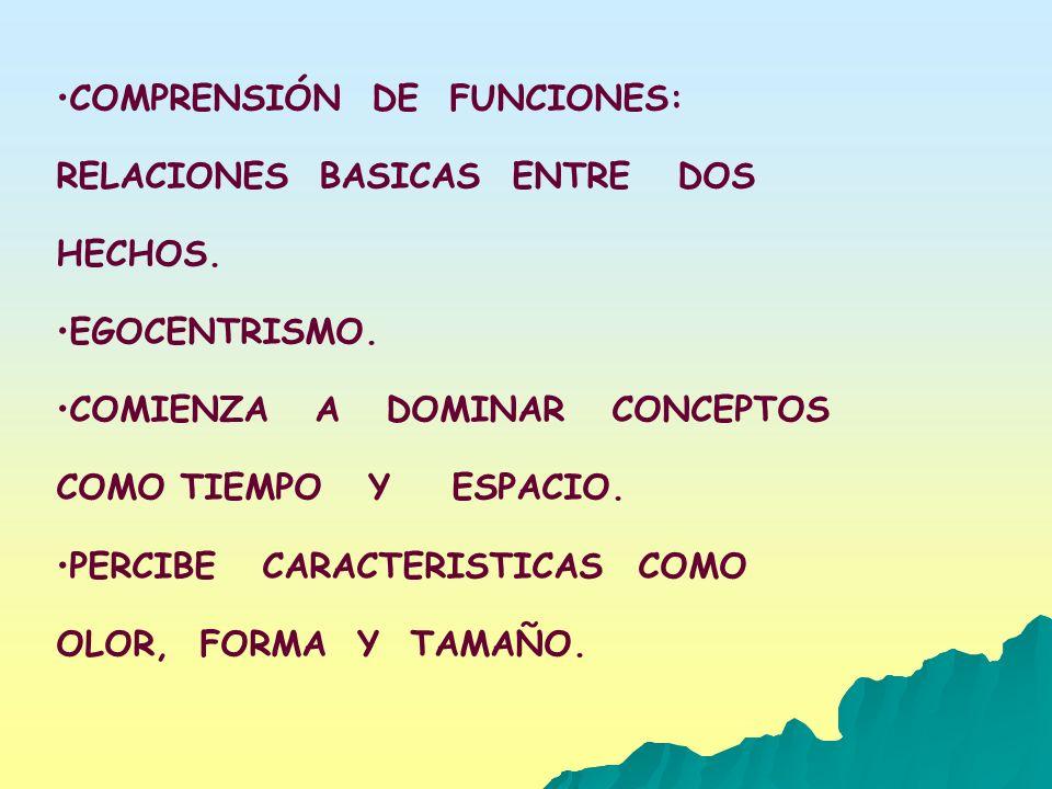 COMPRENSIÓN DE FUNCIONES: RELACIONES BASICAS ENTRE DOS HECHOS. EGOCENTRISMO. COMIENZA A DOMINAR CONCEPTOS COMO TIEMPO Y ESPACIO. PERCIBE CARACTERISTIC