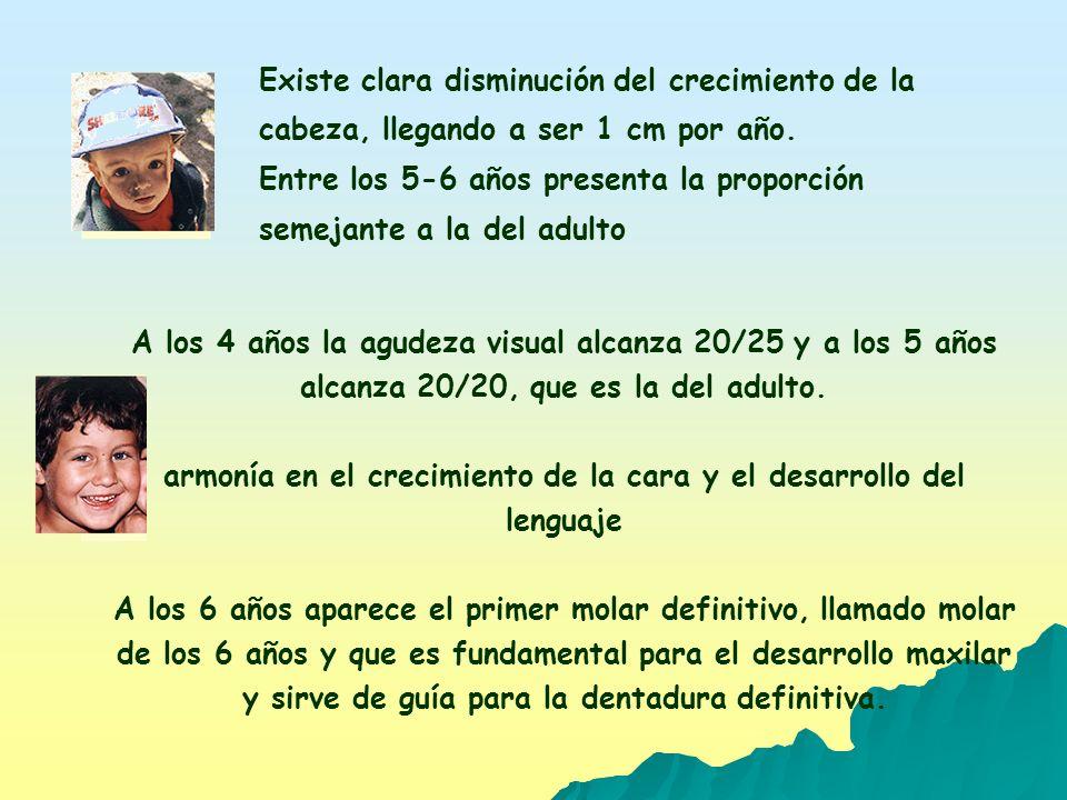 DESARROLLO ARTÍSTICO A LOS DOS AÑOS LOS NIÑOS GARABATEAN LINEAS Y ZIG ZAG.