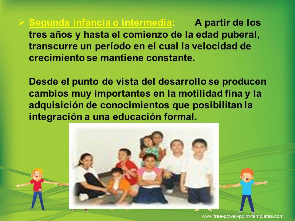 Segunda infancia o intermedia: A partir de los tres años y hasta el comienzo de la edad puberal, transcurre un período en el cual la velocidad de crec