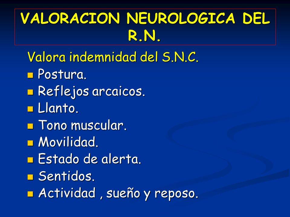 VALORACION NEUROLOGICA DEL R.N. Valora indemnidad del S.N.C. Postura. Postura. Reflejos arcaicos. Reflejos arcaicos. Llanto. Llanto. Tono muscular. To