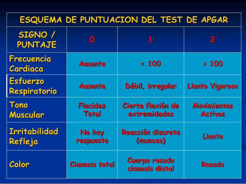 ESQUEMA DE PUNTUACION DEL TEST DE APGAR SIGNO / PUNTAJE 012 Frecuencia Cardiaca Ausente < 100 > 100 Esfuerzo Respiratorio Ausente Débil, irregular Lla