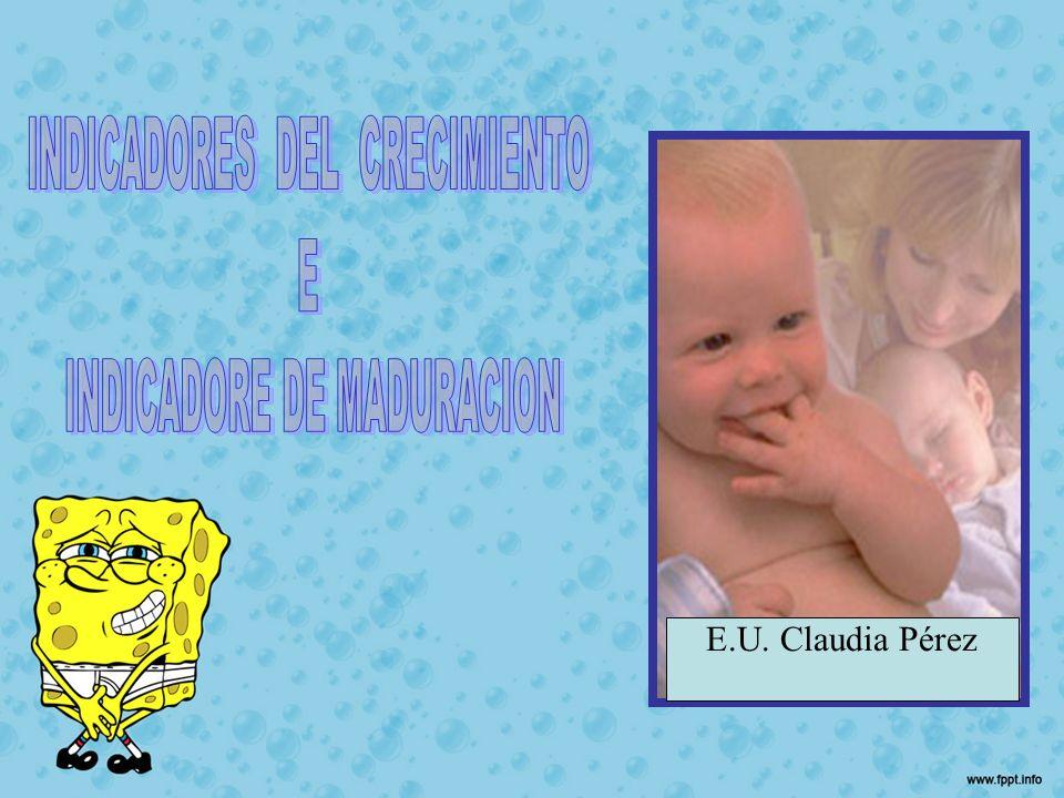 E.U. Claudia Pérez