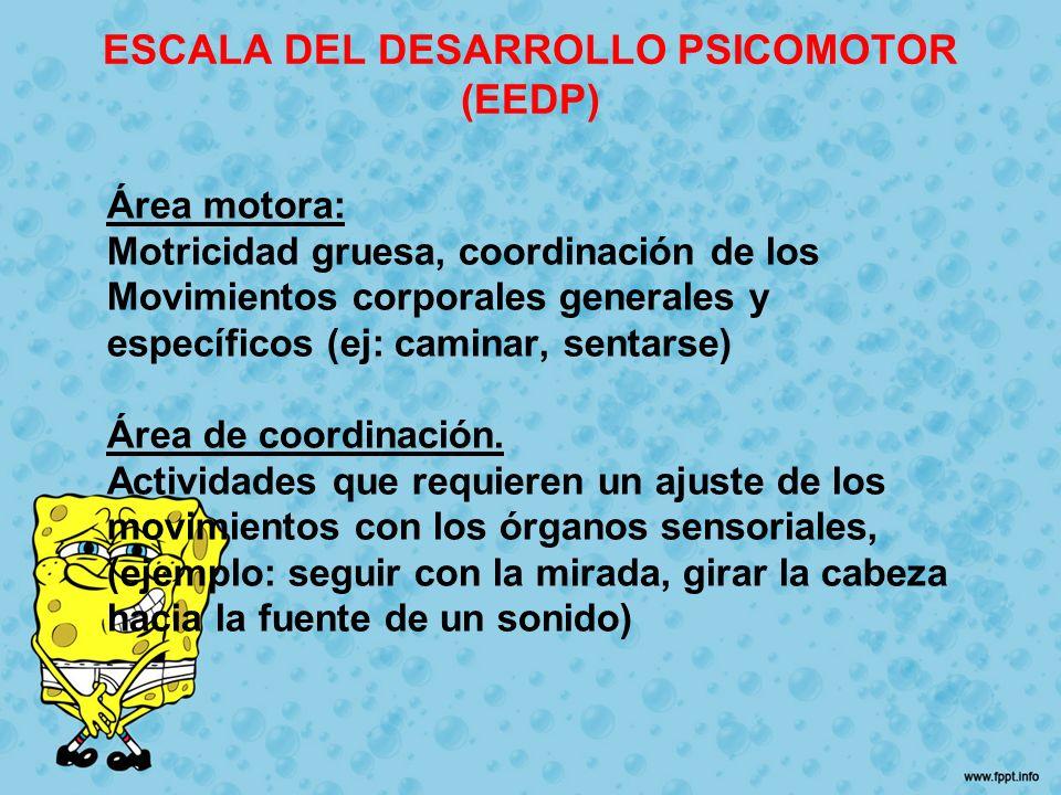 Área motora: Motricidad gruesa, coordinación de los Movimientos corporales generales y específicos (ej: caminar, sentarse) Área de coordinación. Activ
