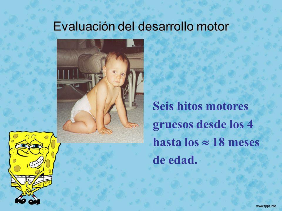 Evaluación del desarrollo motor Seis hitos motores gruesos desde los 4 hasta los 18 meses de edad.