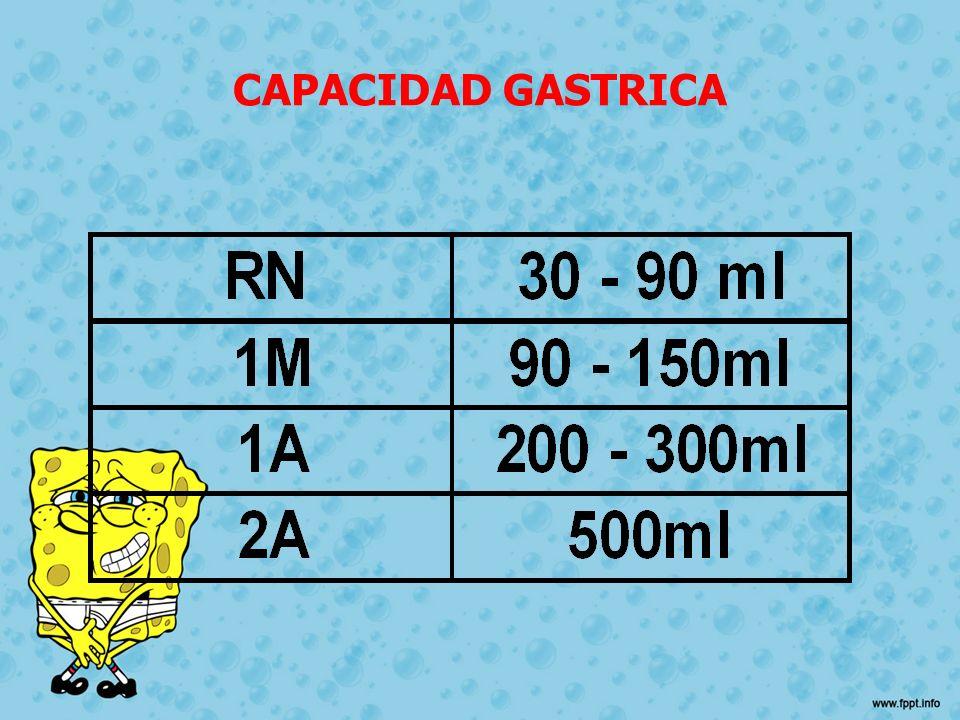 CAPACIDAD GASTRICA