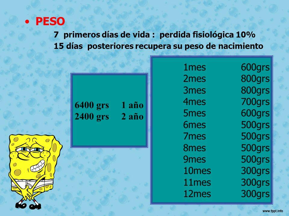 PESO 7 primeros días de vida : perdida fisiológica 10% 15 días posteriores recupera su peso de nacimiento 1mes600grs 2mes 800grs 3mes800grs 4mes700grs