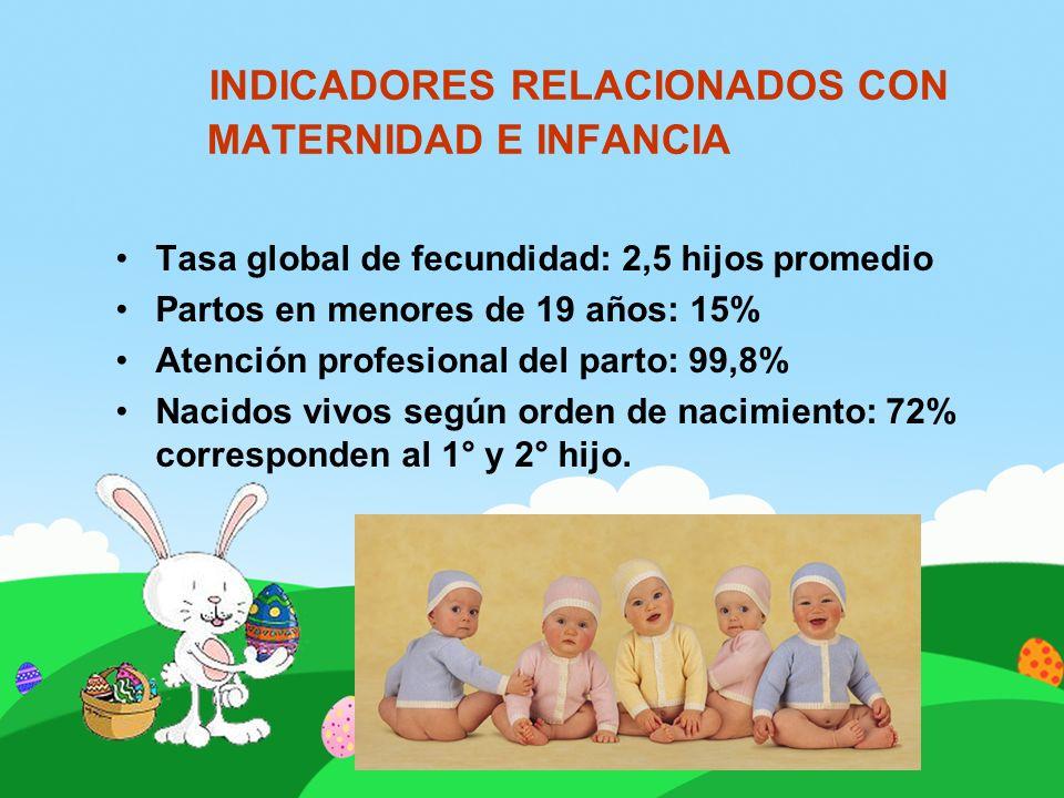 INDICADORES RELACIONADOS CON MATERNIDAD E INFANCIA Tasa global de fecundidad: 2,5 hijos promedio Partos en menores de 19 años: 15% Atención profesiona